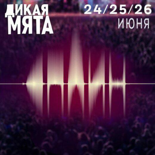 Группа «Сплин» выступит на фестивале «Дикая Мята»